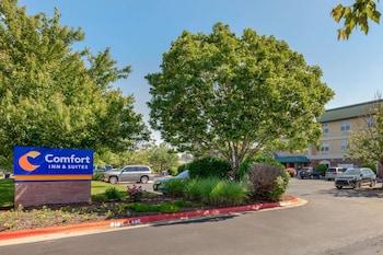 Hotel - Comfort Inn & Suites Fayetteville