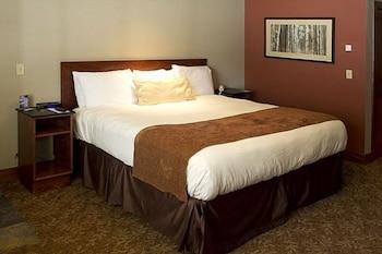 阿瓦隆旅館 Avalon Lodge
