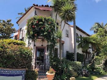 Hotel - Villa Rosa Inn