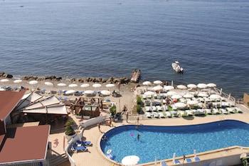 Hotel - Hotel Cavalluccio Marino