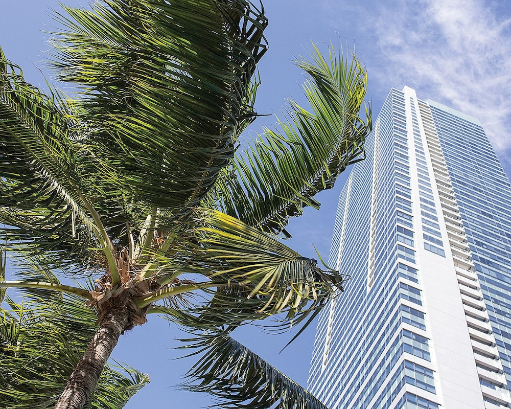 Four Seasons, Executive Suite, City View