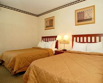 Premium Room, 2 Double Beds
