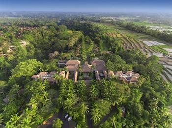 Hotel - Maya Ubud Resort and Spa