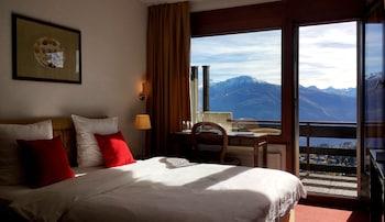 Double Room Single Use, Balcony, Mountain View
