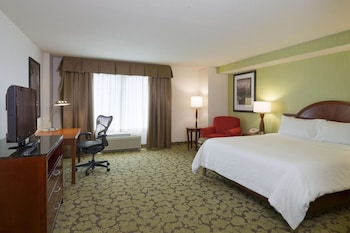 Room, 1 King Bed, Accessible (Roll-in Shower, Hearing/ Mobility)