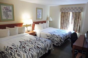 Standard Suite, 2 Queen Beds, Smoking
