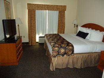 Guestroom at Best Western Magnolia Inn And Suites in Ladson