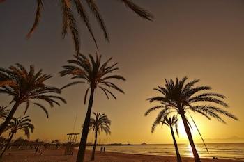 Club Palma Bay Resort - Beach  - #0