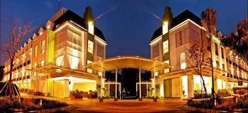 Hotel - Pomelotel
