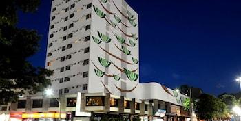 科巴維德斯飯店 Copas Verdes Hotel
