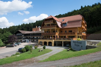 Wald Hotel Heppe