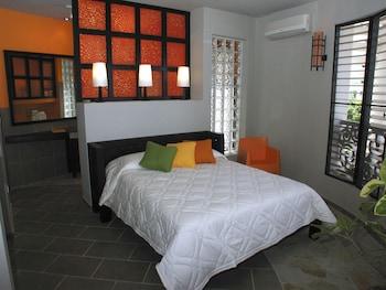 Hotel - Hotel El Magnifico