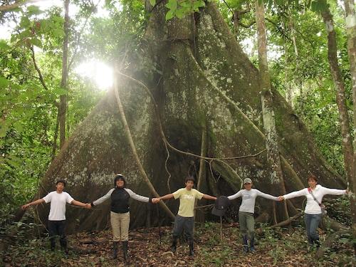 Amazonas Sinchicuy Lodge, Maynas