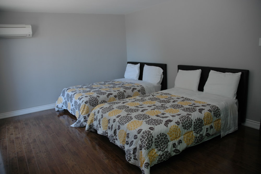 Shared Dormitory, Mixed Dorm (1 Bed per Reservation)