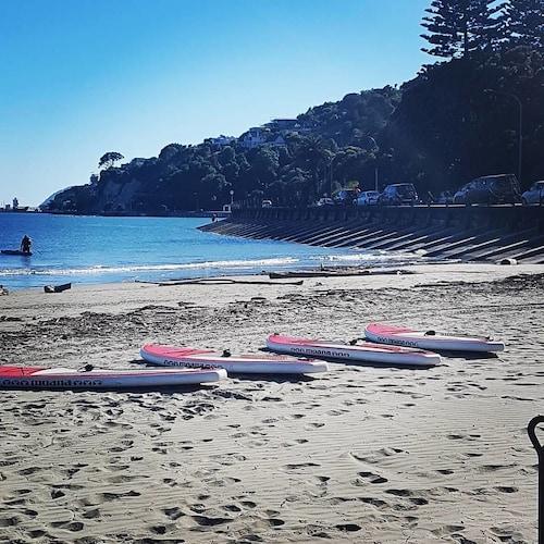 Beaches Nelson, Nelson