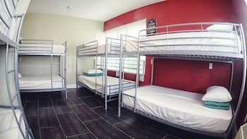 Shared Dormitory, 1 Twin Bed (Female, Eight Bed Dormitory)