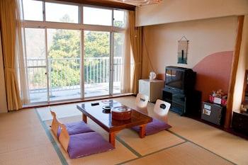 Hotel - Hakone Gora Onsen Suirinso