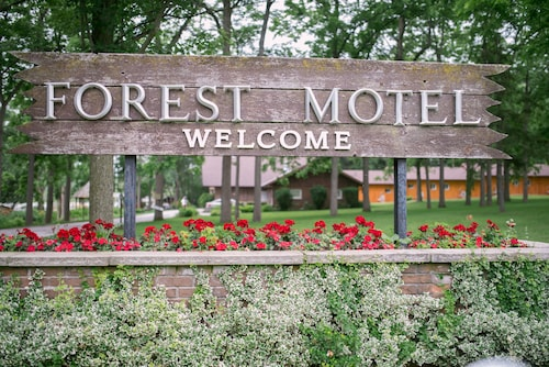 . Forest Motel & Woodland Retreat