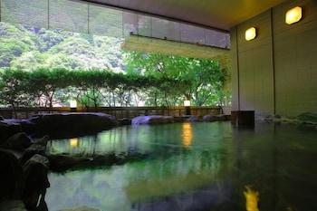Enraku - Natural Pool  - #0