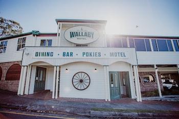 袋鼠飯店 Wallaby Hotel
