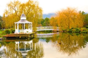 湖邊小屋旅館 Lakeside Cottage