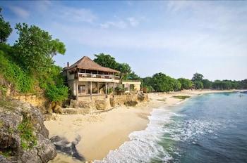 Hotel - Mushroom Beach Bungalow