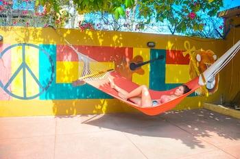 Hotel - Reggae Hostel Ocho Rios
