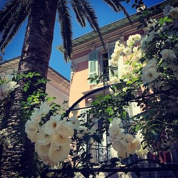 Hotel - HOTEL VILLA ROSE