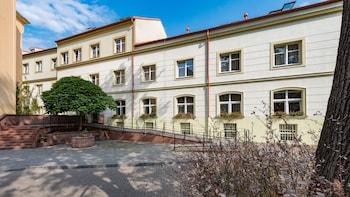 Hotel - Hotel Ostrůvek