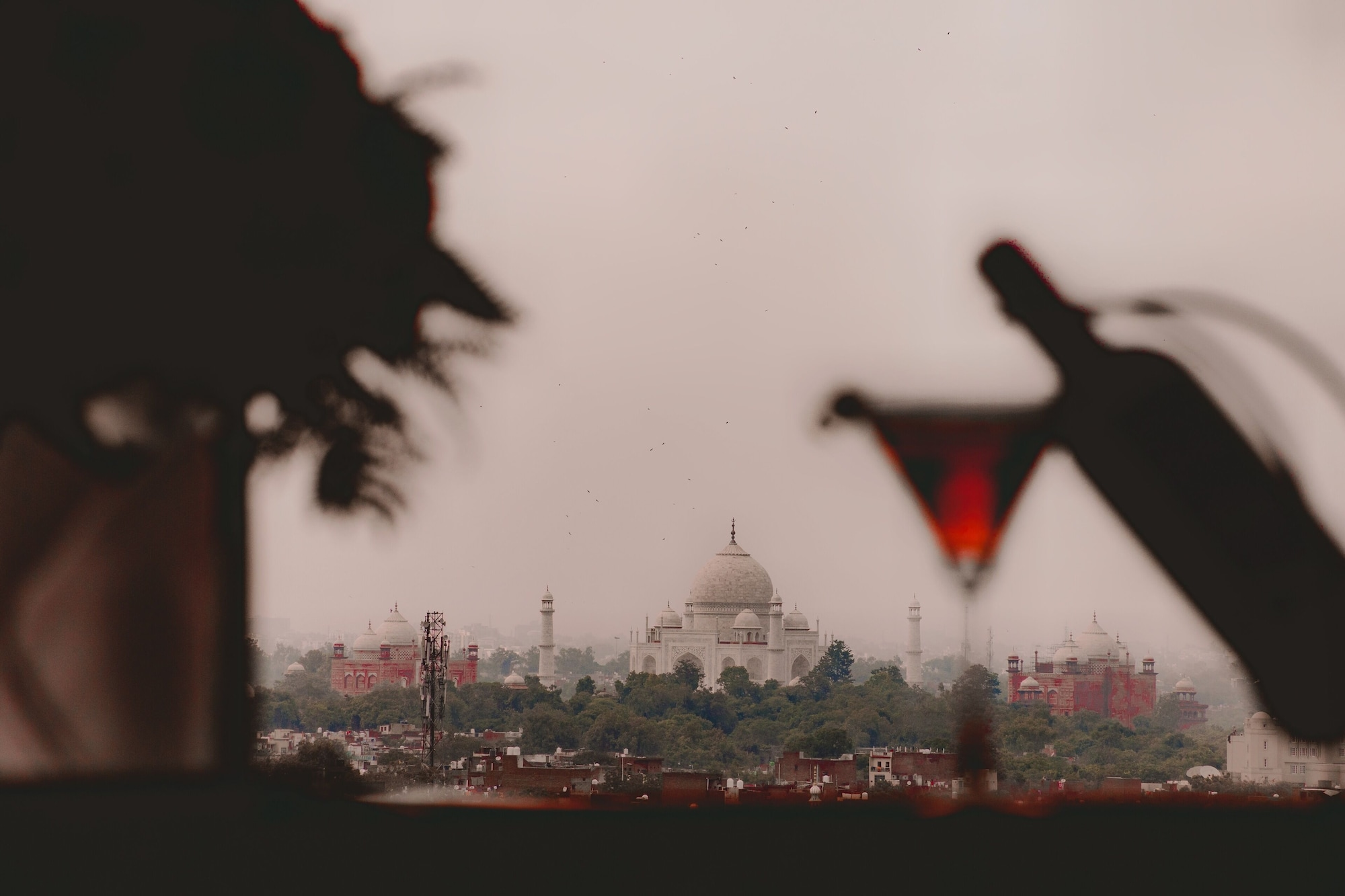 Radisson Hotel Agra, Agra