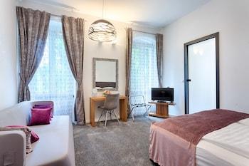 Luxury Room with Park View - Sredmanuska 1
