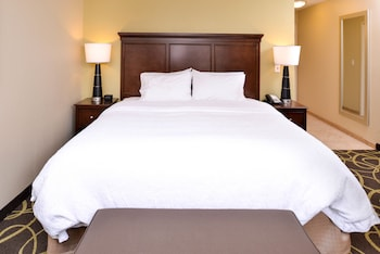 Room, 1 King Bed, Non Smoking, Refrigerator & Microwave
