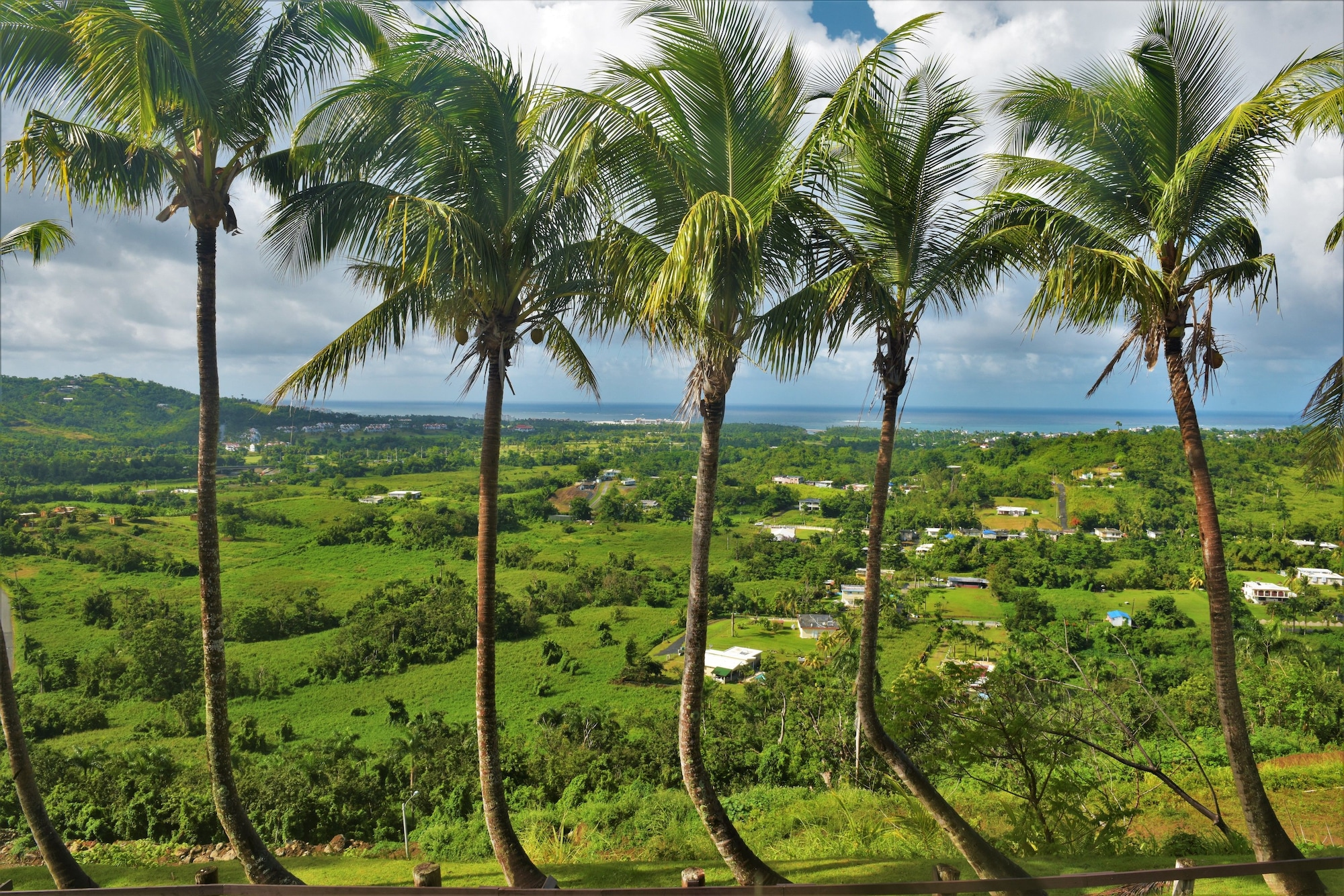 Rainforest and Ocean View Suites - Mountain Lodge,