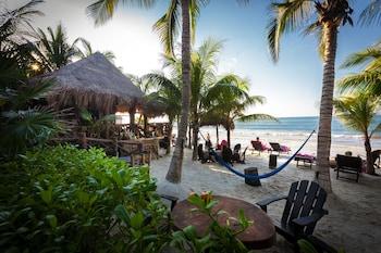 Hotel - Beachfront Hotel La Palapa - Adults Only