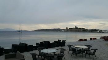 The Hotel 48 - Beach  - #0
