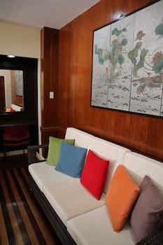 Domicilio Lorenzo Apartelle Davao Living Area