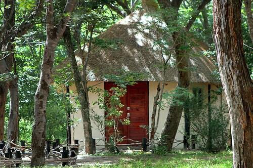 Gwango Elephant Lodge, Hwange