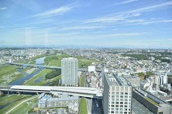 FUTAKOTAMAGAWA EXCEL HOTEL TOKYU View from Property