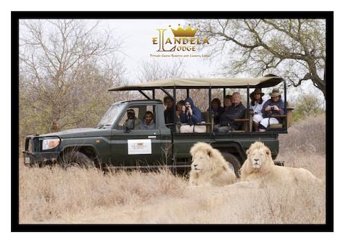 Elandela Private Game Reserve & Luxury Lodge, Mopani