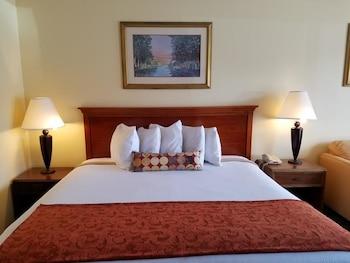 Guestroom at Sun Inn & Suites in Kissimmee