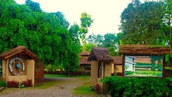 河景森林營地