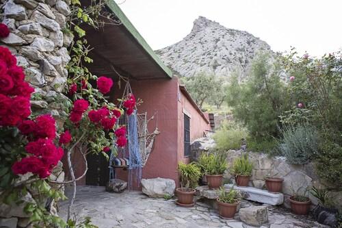 . El Refugio de Alamut