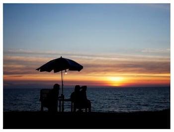 Hotel - Micky Monkey Beach
