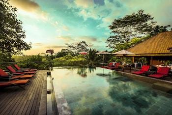 Hotel - Jungle Retreat by Kupu Kupu Barong