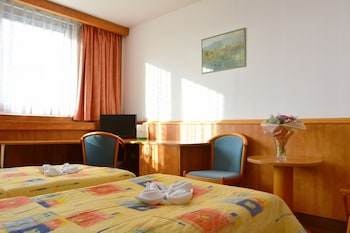 Superior Double Room (Wifi and Parking)