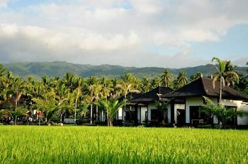 Hotel - Pandawa Village