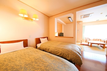 Traditional Single Room, Mountain View
