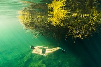 Hotel - MangleX Cenote Eco Hotel