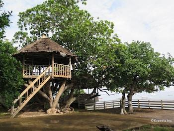 Kalipayan Beach Resort Bohol Property Grounds
