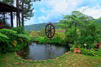 Dahilayan Forest Park Resort Bukidnon Property Grounds